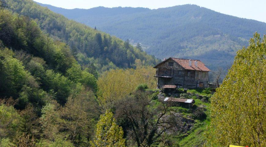 Küre Dağları Pınarbaşı-Azdavay (13)